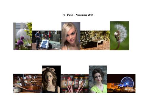 My Successful 'LIPF' Panel 2013