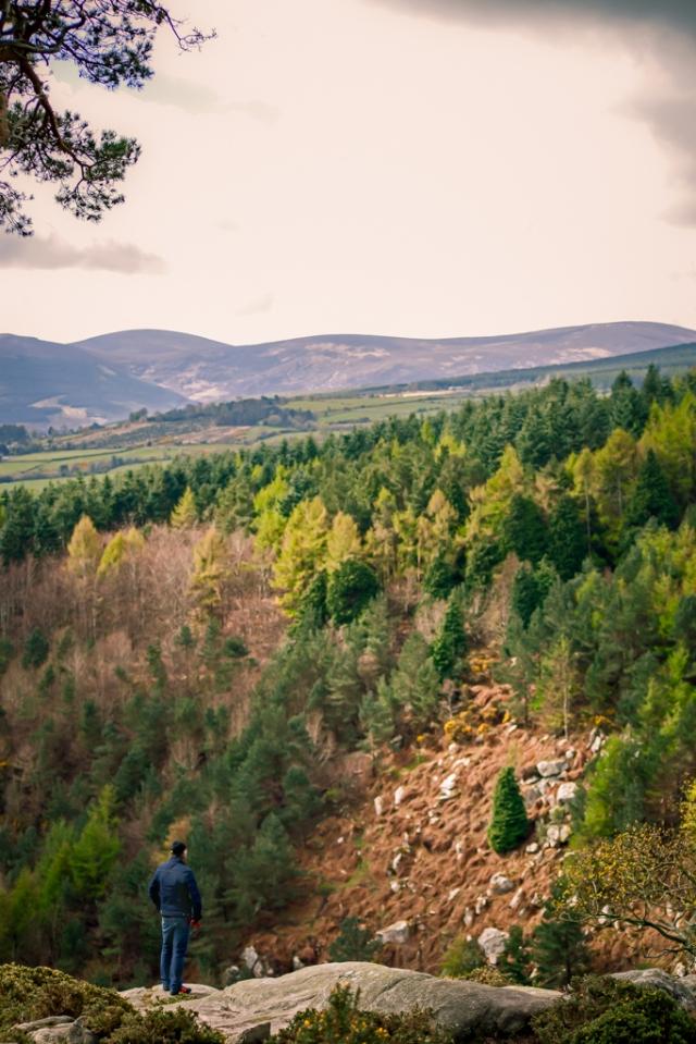 2012 04 17_Barnasligan Lane & Garden Macro's_8736
