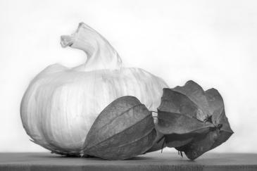 untitled-1913-edit