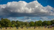 Kilmac Horseshow 2018-0222