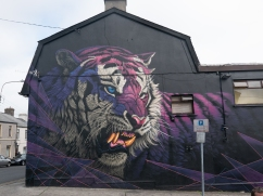 Waterford Walls 2018-1190694